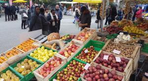"""La """"grande mela"""" invade e colora le strade di Caprie"""