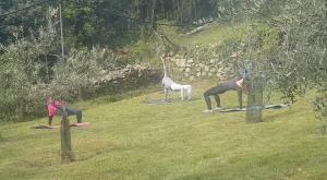 Borgone, Laura si reinventa insegnando fitness nell'oliveto