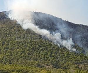 Caselette: vasto incendio sulle pendici del Musinè