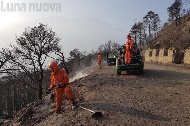 Post-incendi: pronto il Piano di ripristino del territorio